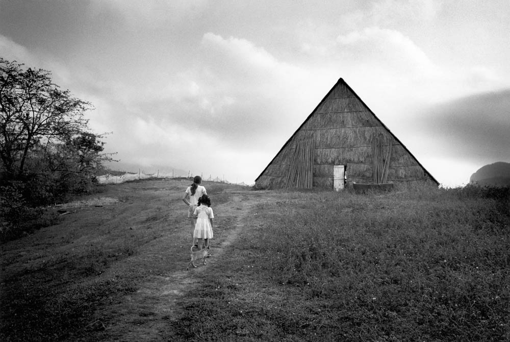 06. Tobacco barn