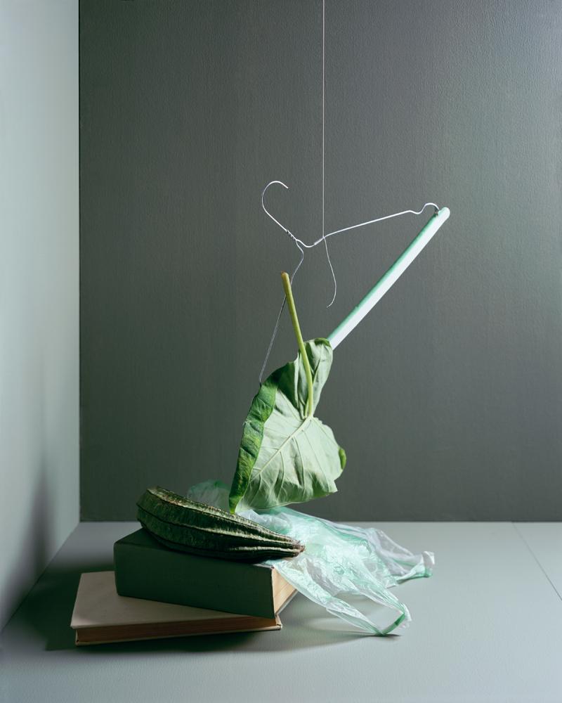 Brand_6_Leaf-hanger