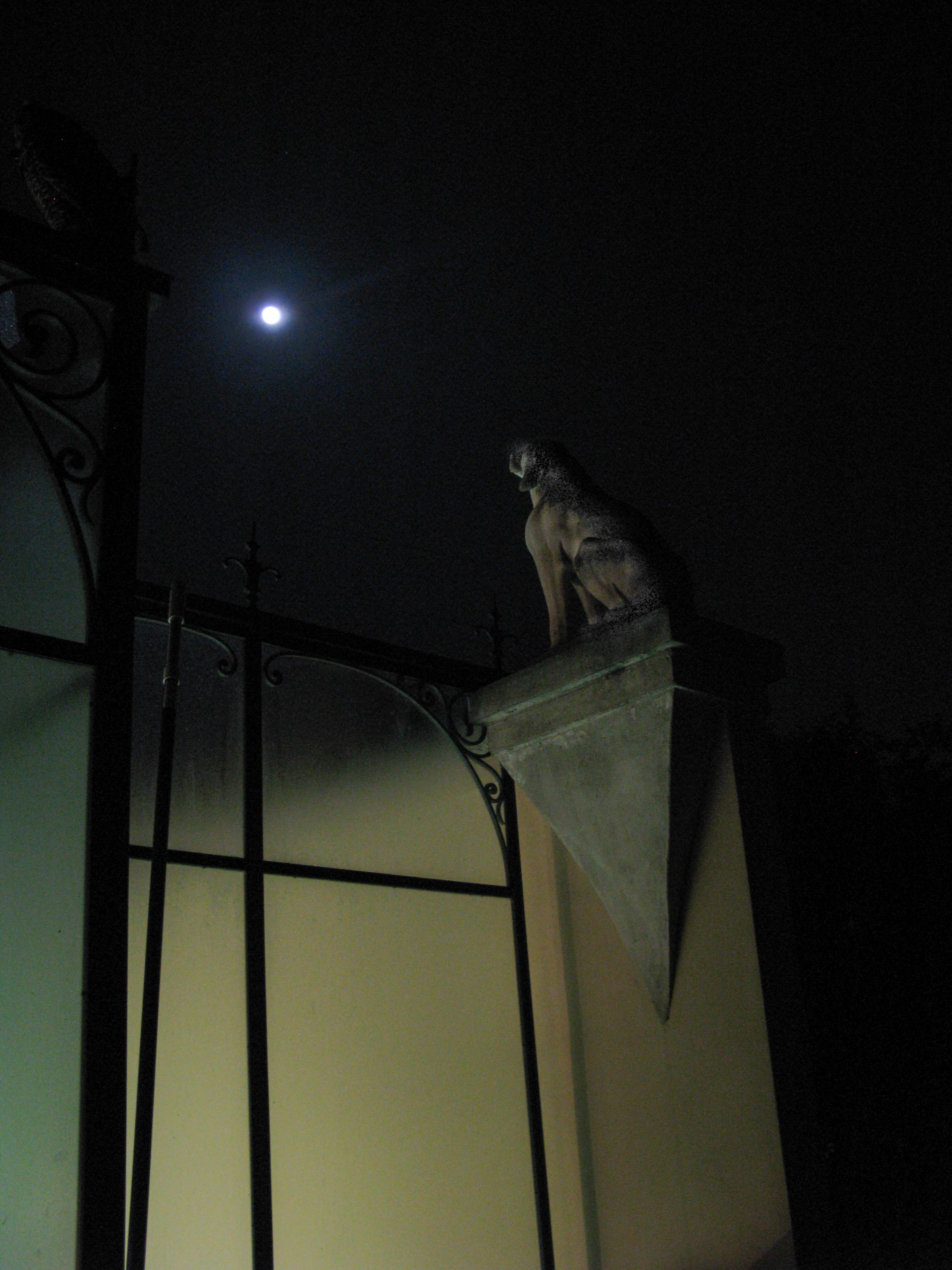 Dog statue Moon