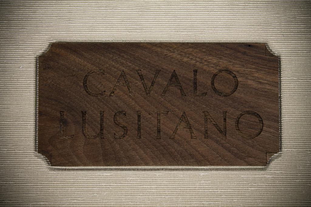 07_Lusitano(1)