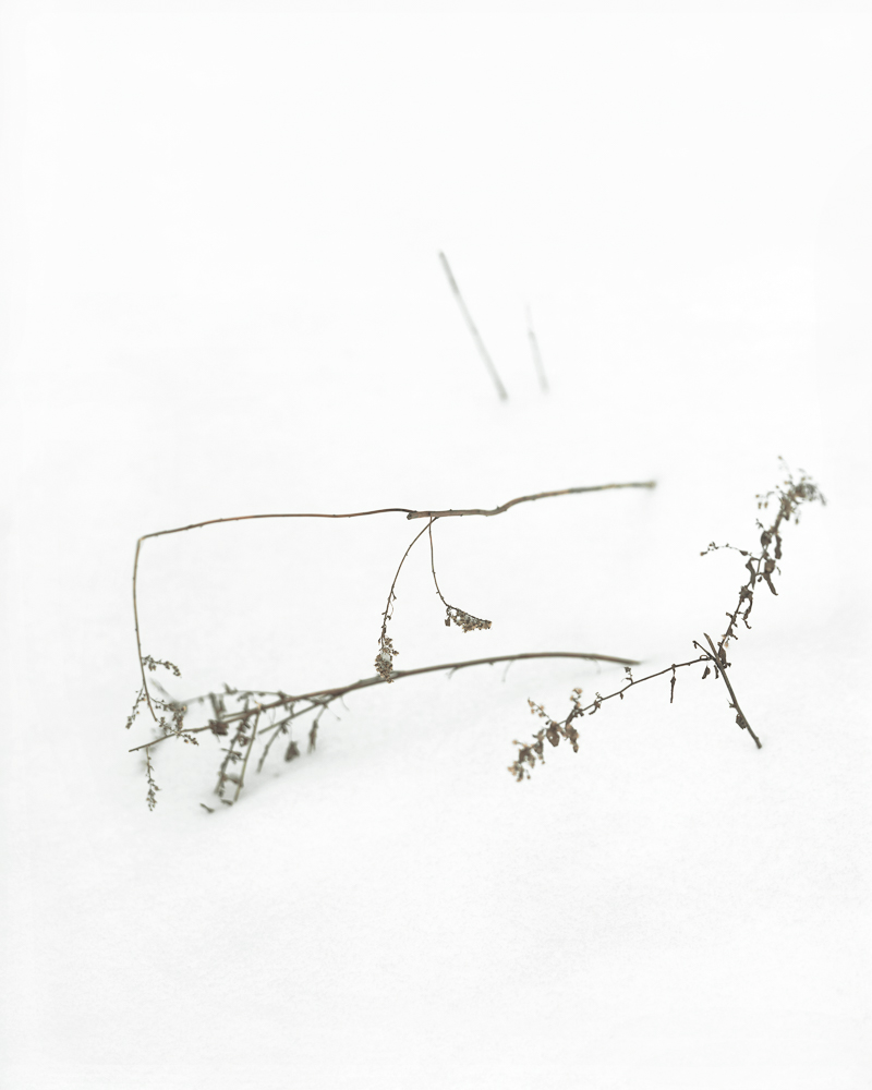 Snow Rectangle_v2
