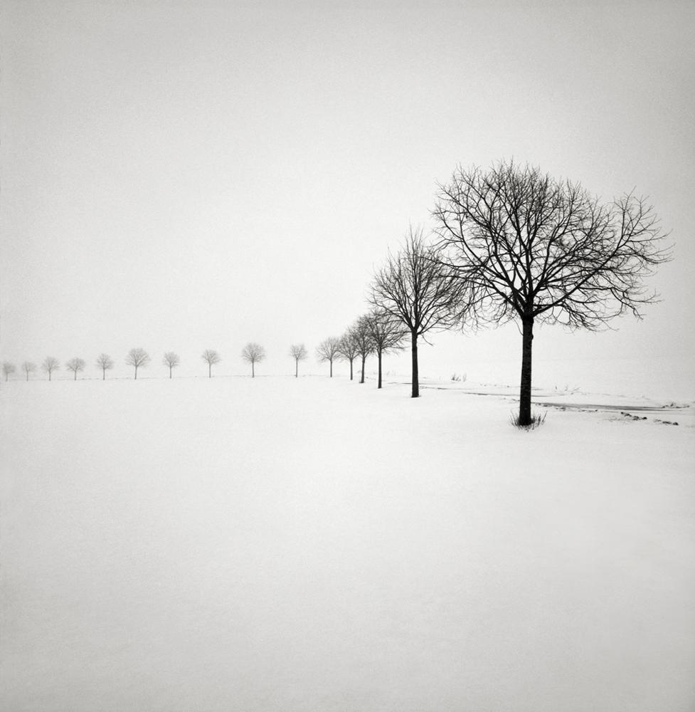 35. Snow Scene III. Sweden 2009