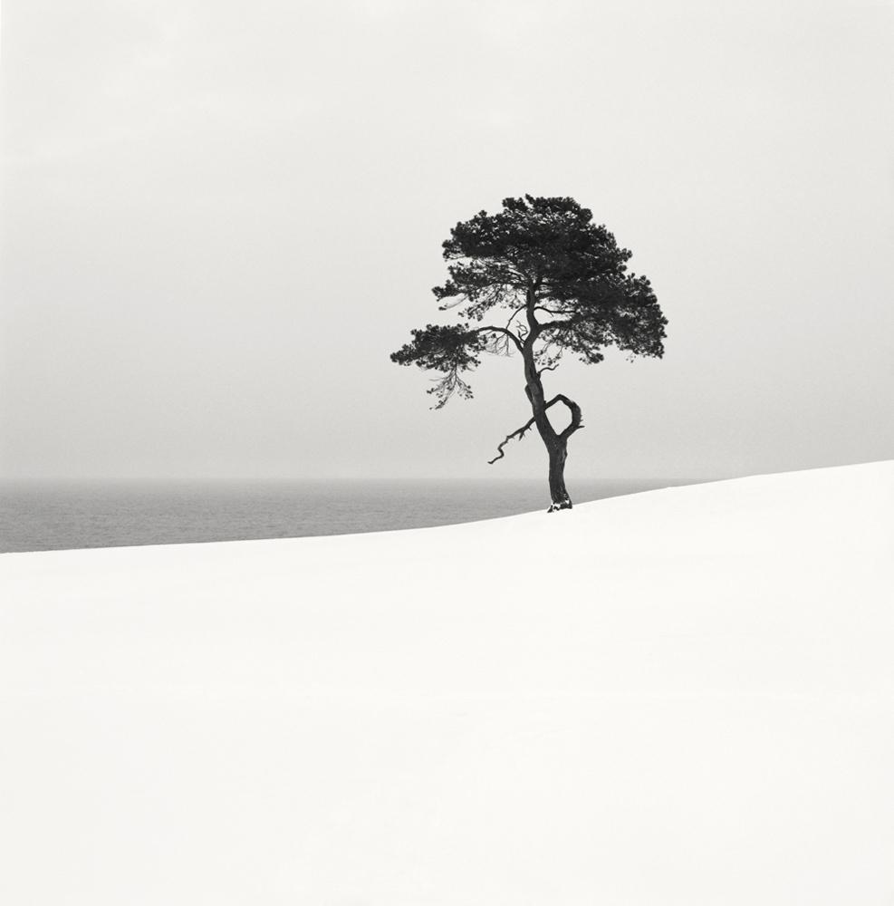 36. Snow Scene XX. Sweden 2009