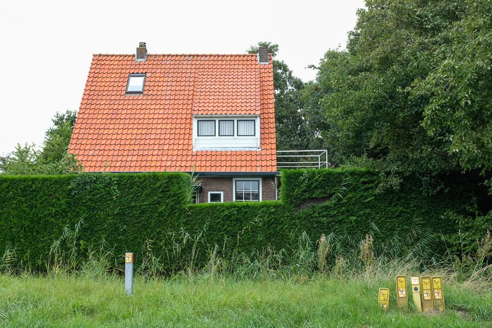 Dineke_Versluis