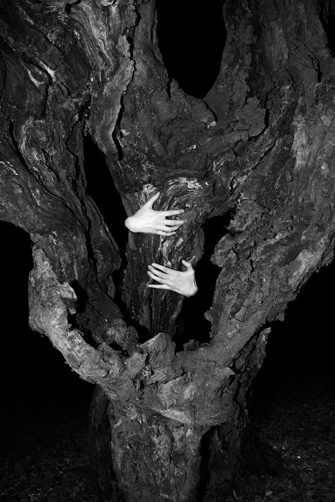 Elena-Helfrecht_The-Origin-of-Touch