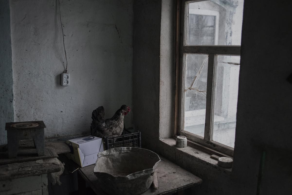 Abandoned house, Village of Kominternovo. Donetsk region, Ukraine