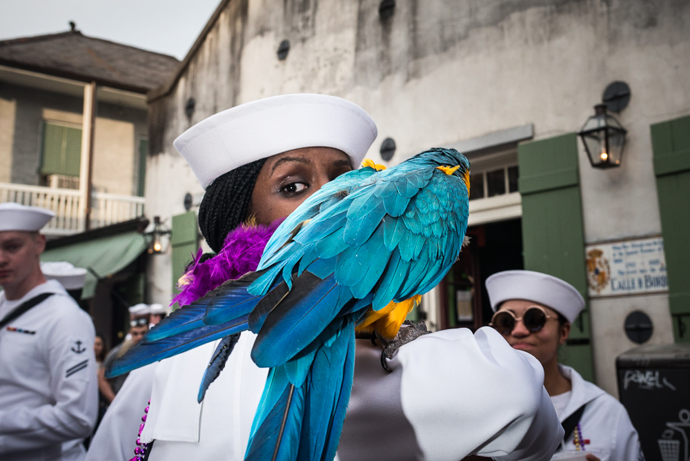 Sailor and Parrot, New Orleans LA, April 2018