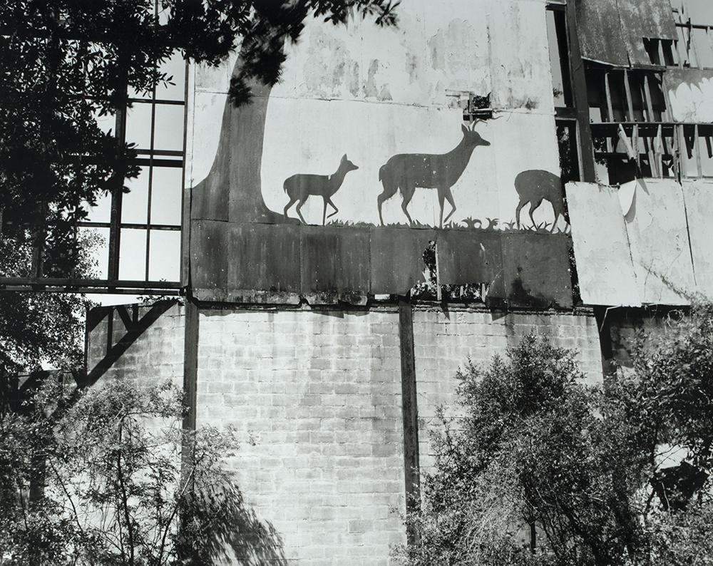 Van Parys_Deer Crossing