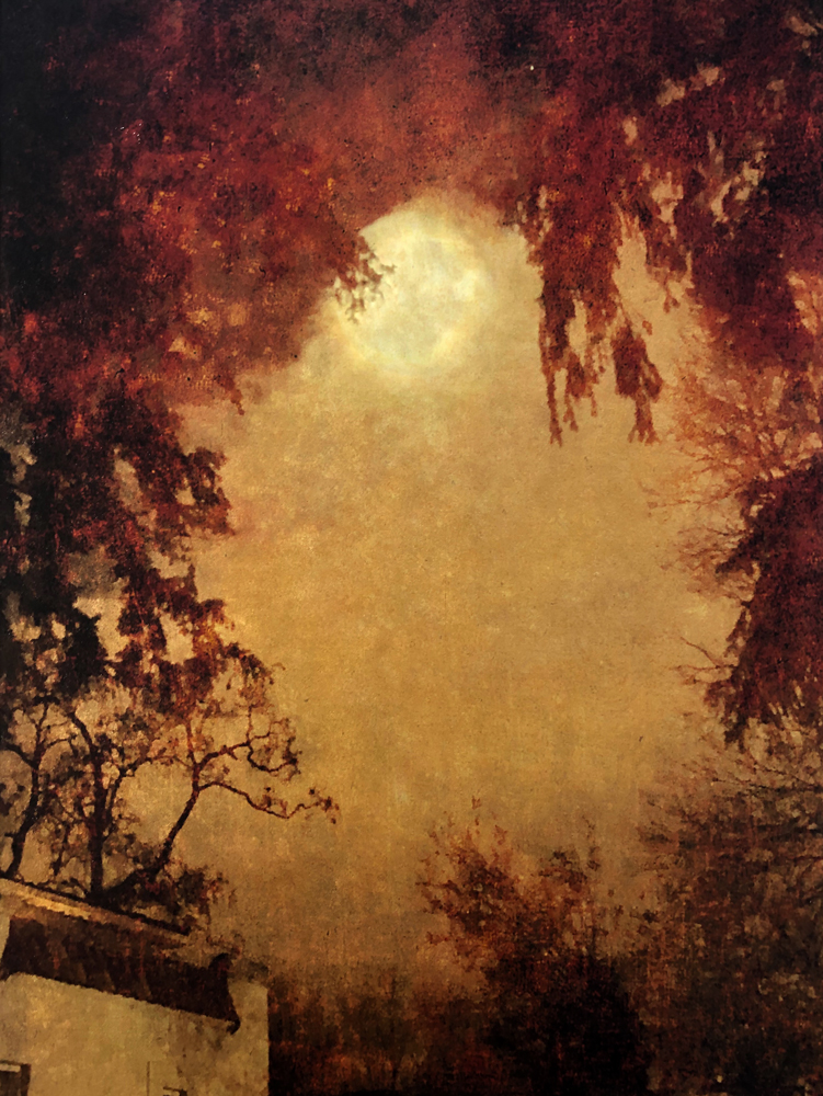 wendi-schneider-evenings-with-the-moon2