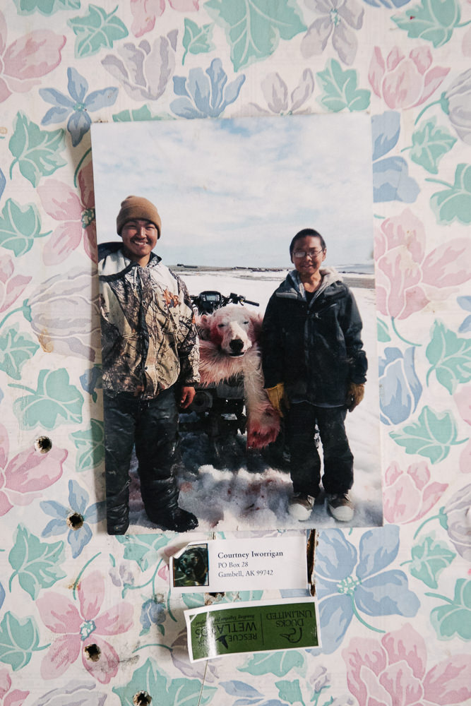 A family photograph of a rare polar bear hunt. Subsistence hunting remains a strong source of pride to the Yup'ik. One ongoing aspect of colonization is the restriction of subsistence hunting rights by non-Native lawmakers.