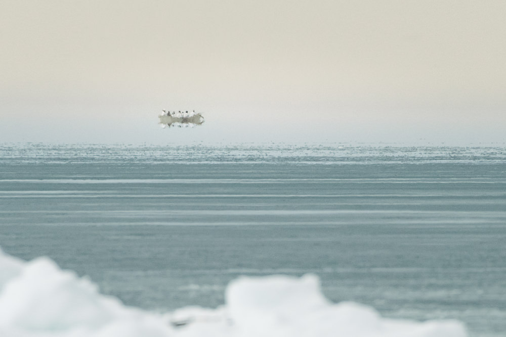 On the Arctic Ocean, Iñupiat paddle their umiaq skinboat. A Fata Morgana mirage makes their umiaq appear to float over the sea. Spring whaling by umiaq is made possible by the shorefast sea ice. As the sea ice gets thinner each spring from a warming climate, traditional whaling becomes increasingly challenging.