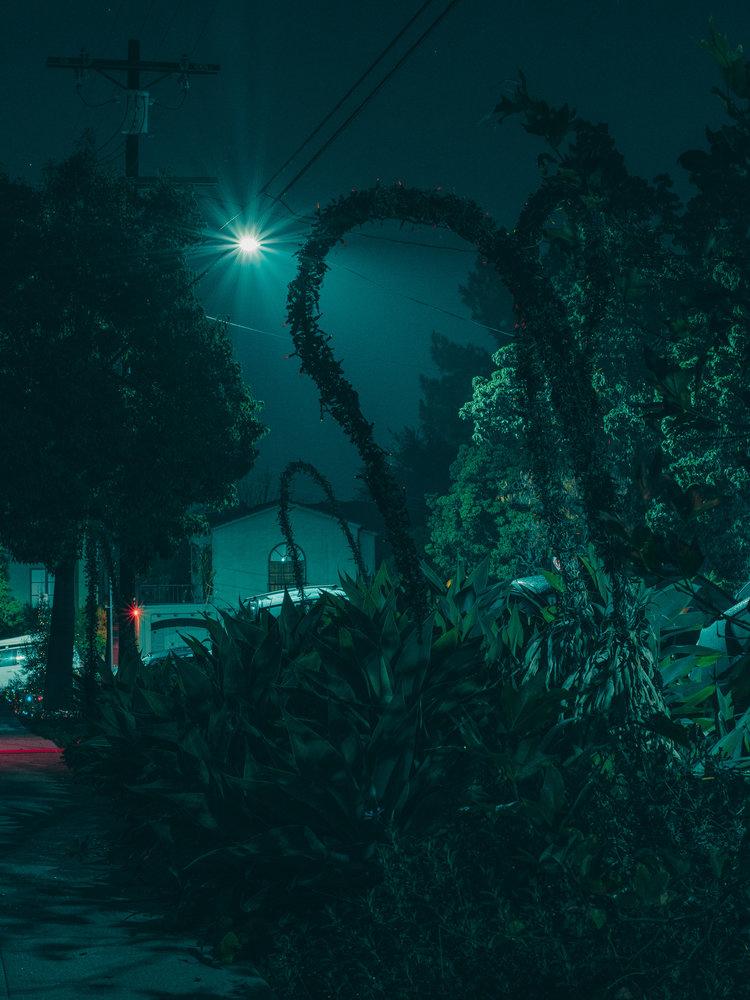Jeff Davenport_Nights