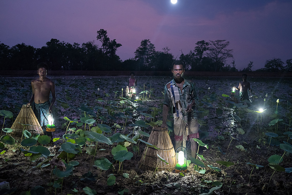 In India's state of Odisha villagers trap fish using cone-shaped baskets and solar light. Fewer than half of Odisha's 42 million residents use grid electricity. Roughly 1.1 billion people in the world live without access to electricity, and close to a quarter of them are in India. The portrait was set up using solar lights as the only source of ilumination.