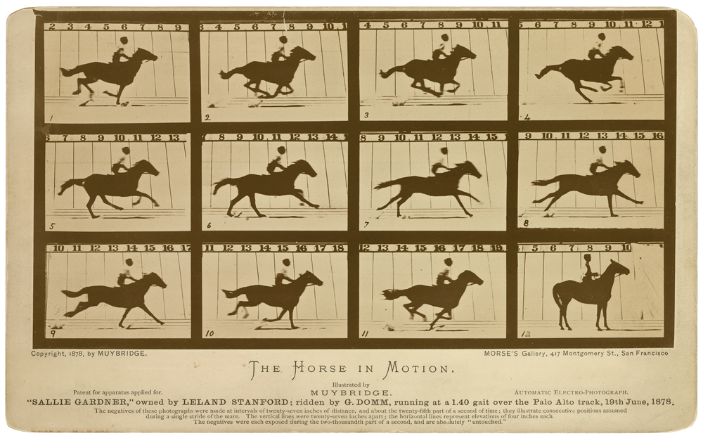 12_04_SS_361_MUYBRDIGE_The_Horse_in_motion3_print
