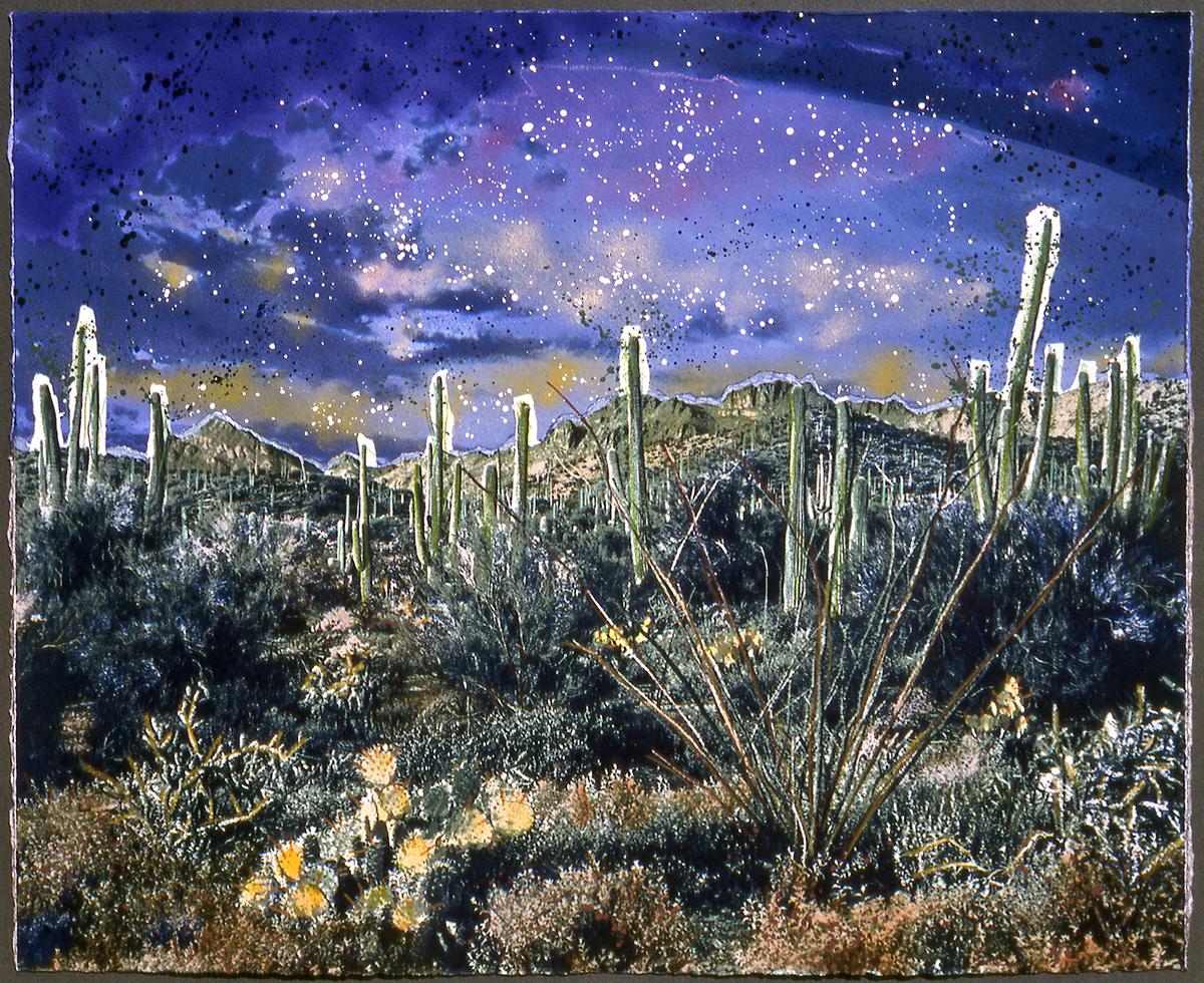 2 Sonora Desert