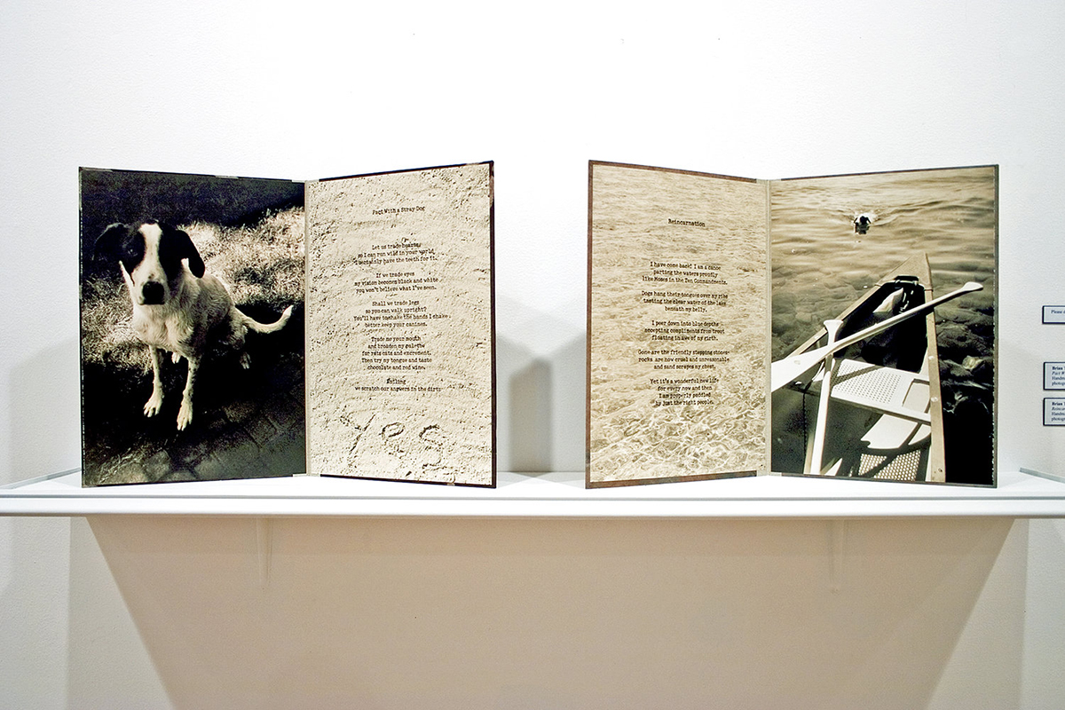 Installation view, illustrated poems