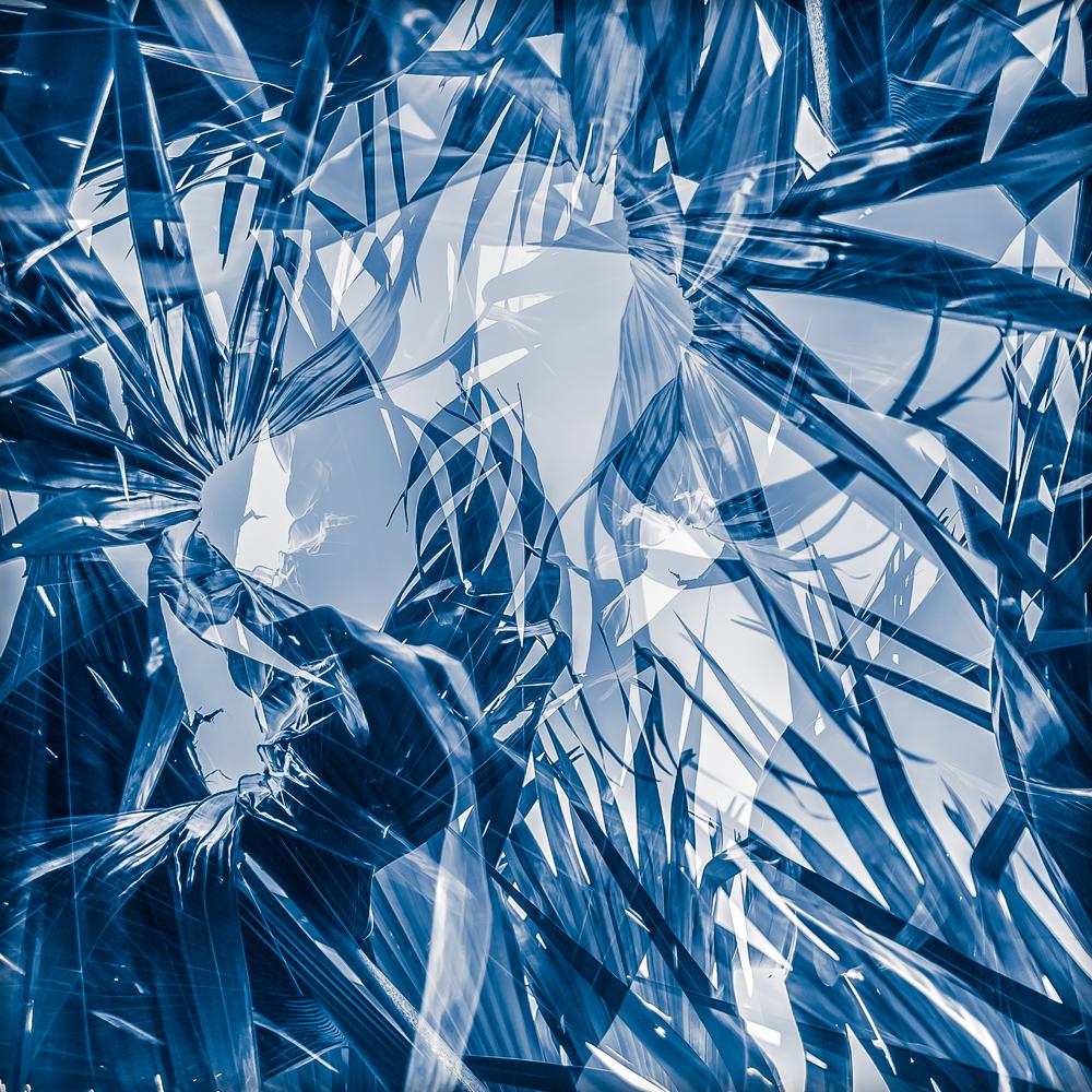 Lodoicea #3 Blue