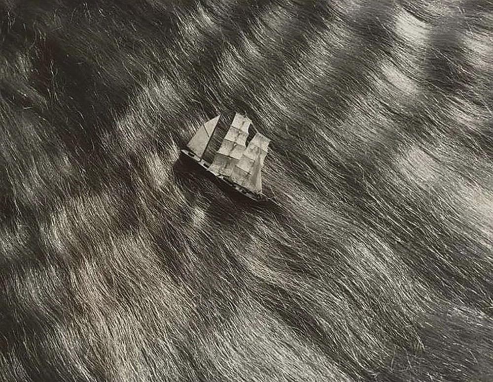 01_dora-maar-study-for-petrole-hahn-1935