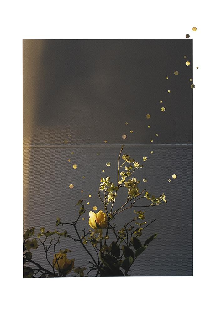 10-Nathalie_Seaver-MOMA flowers