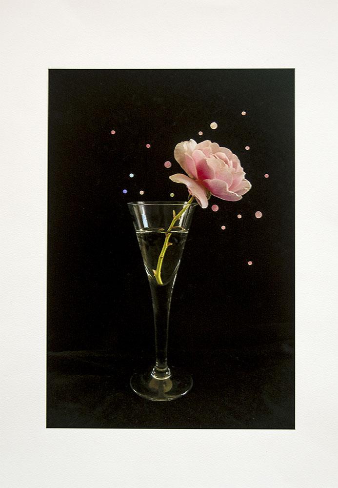 12-Nathalie _Seaver -A Rose 72 Comp
