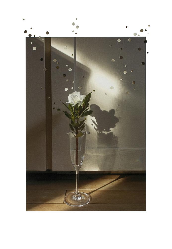 19-Nathalie_Seaver-Champagne rose-web