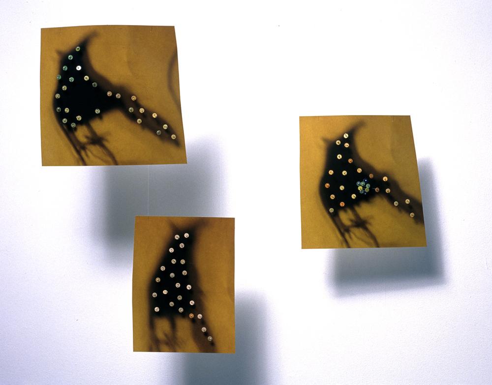 7a. aeiouxy Detail
