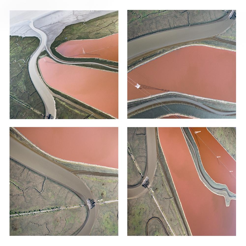 Salt Pond Grid V