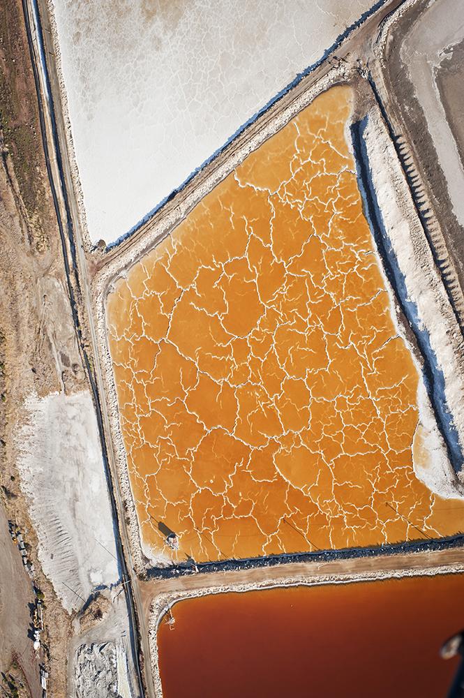 Salt Pond Restoration V