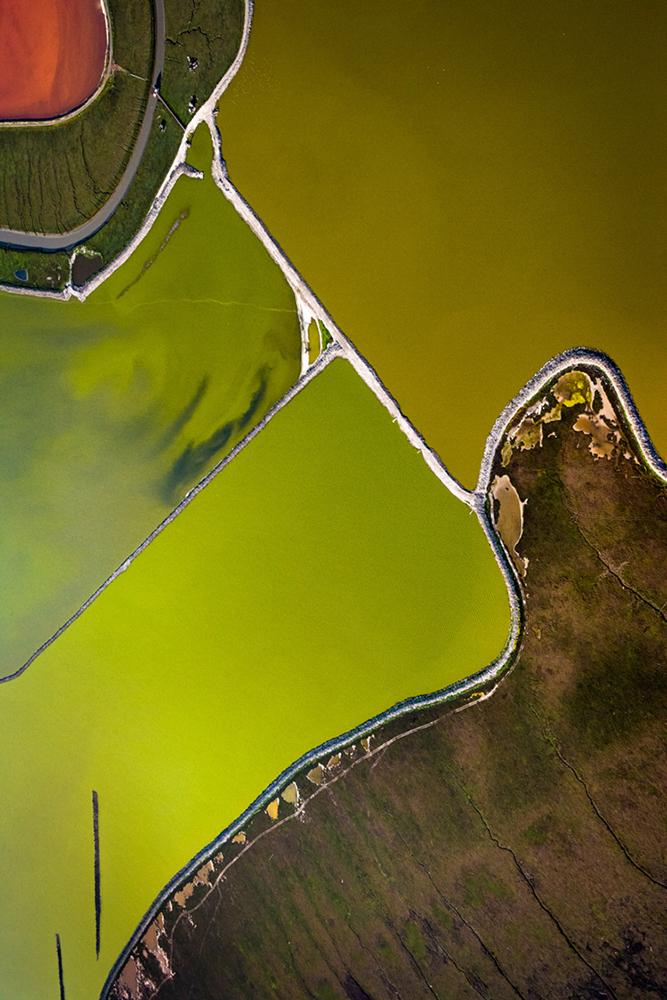 Salt Pond Restoration XII