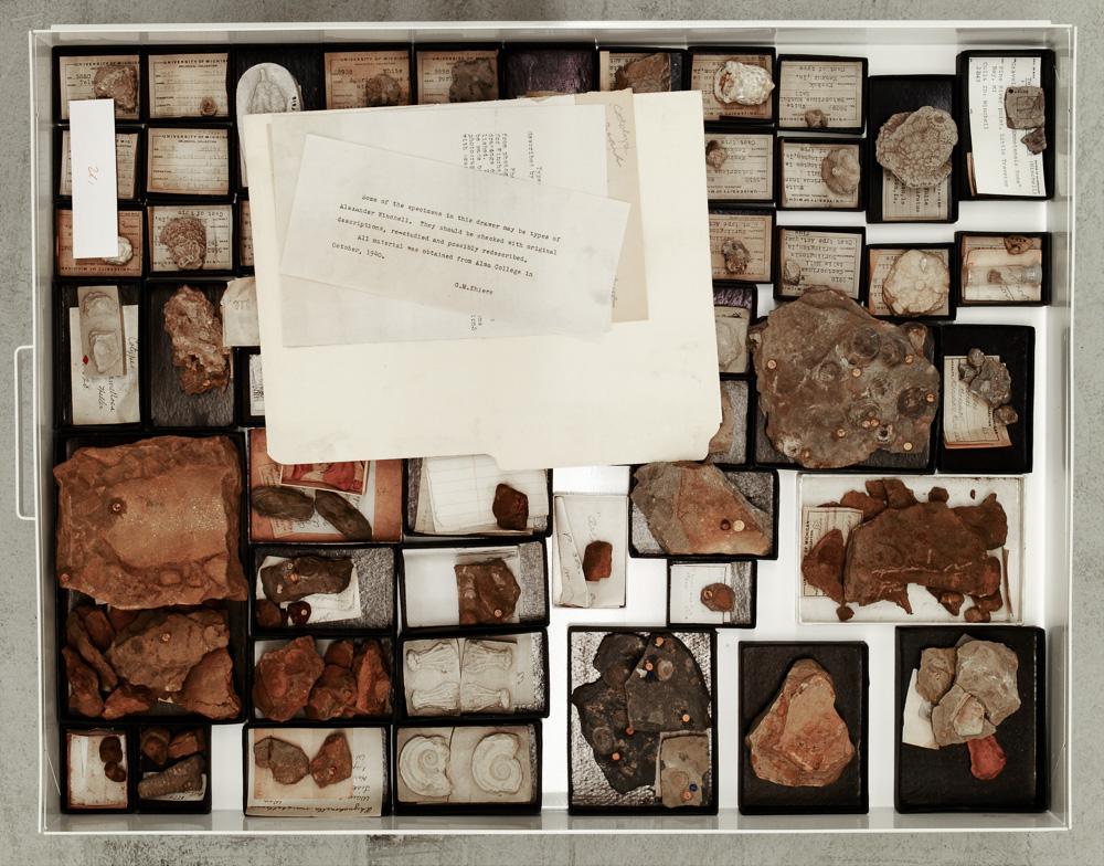 Ress_RESS_IMAGE_Paleontology