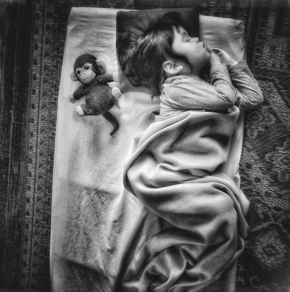 ©Laurie Freitag, Monkey Wide Awake, Los Angeles CA