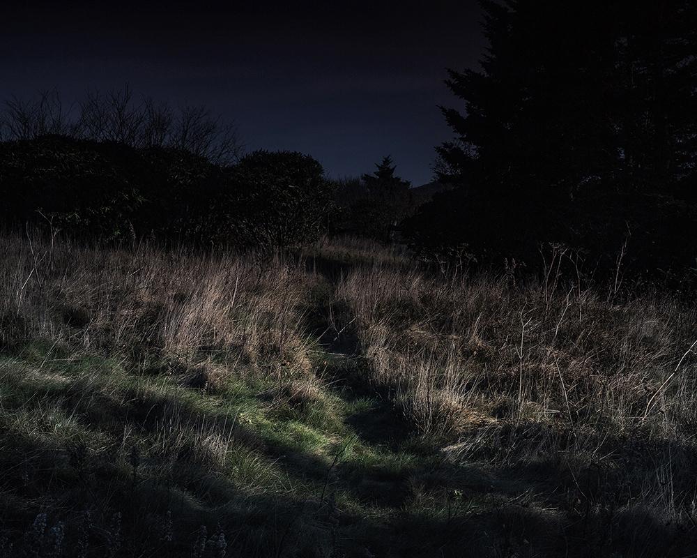6_Pseudo Night, 9, 2018