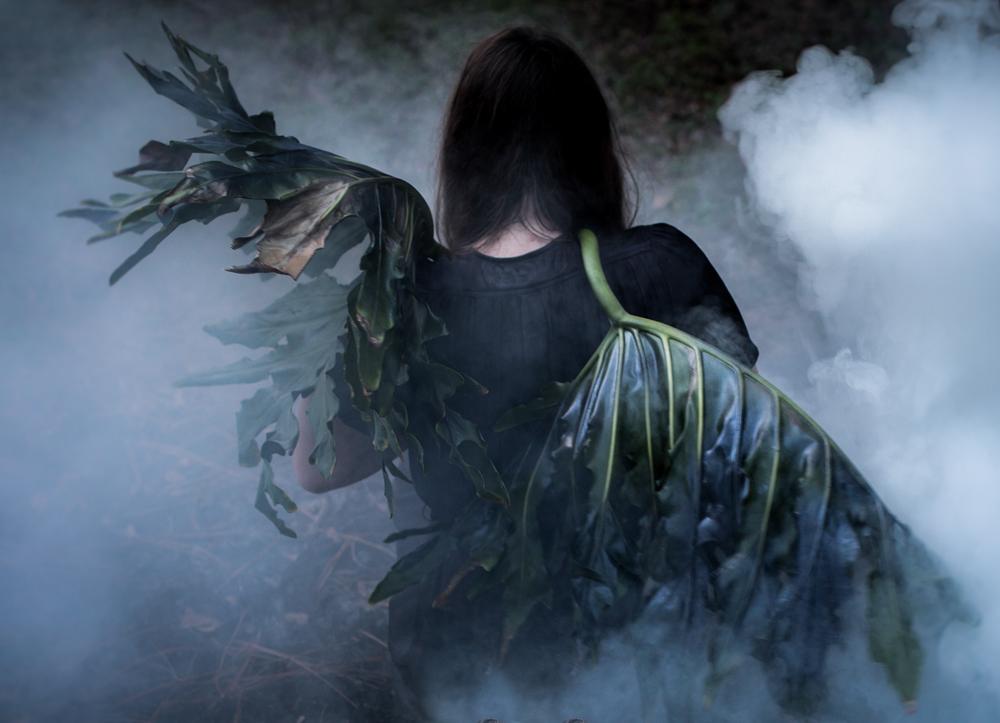 Jaime Aelavanthara_Rise From Ashes