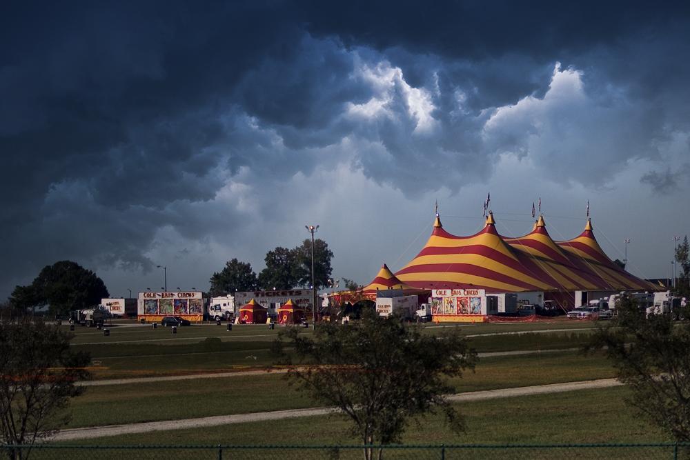 Joey Potter Dark Circus