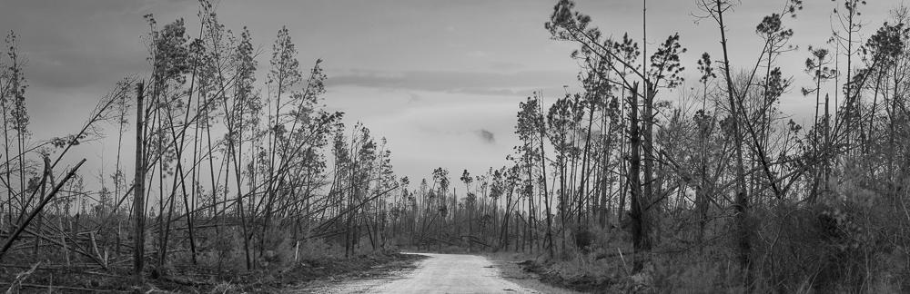CCC Road 1, Clarksville FL