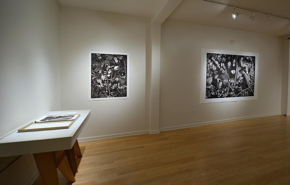 20 Norris Gallery_1000px