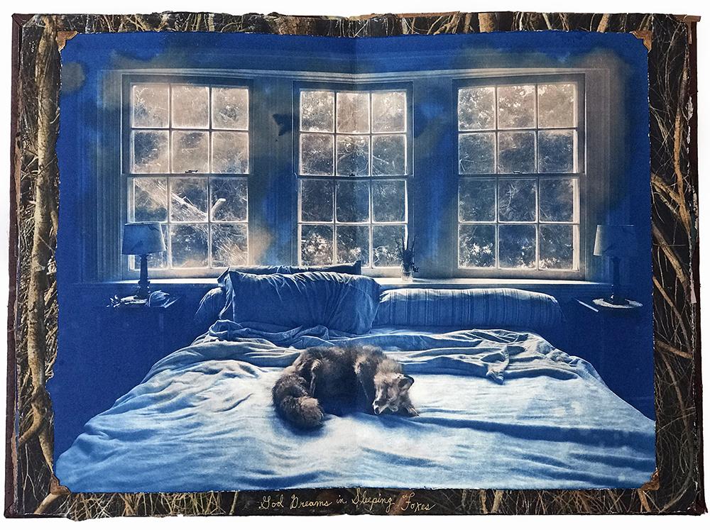Brian Taylor.God Dreams in Sleeping Foxes