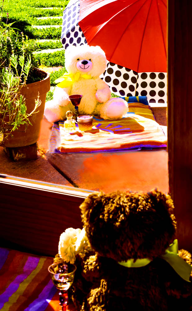 01Teddy Bear's Quarantined Picnic (1 of 1)