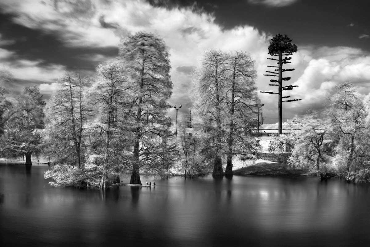 George Katzenberger_Walten's Pond - Garden Grove