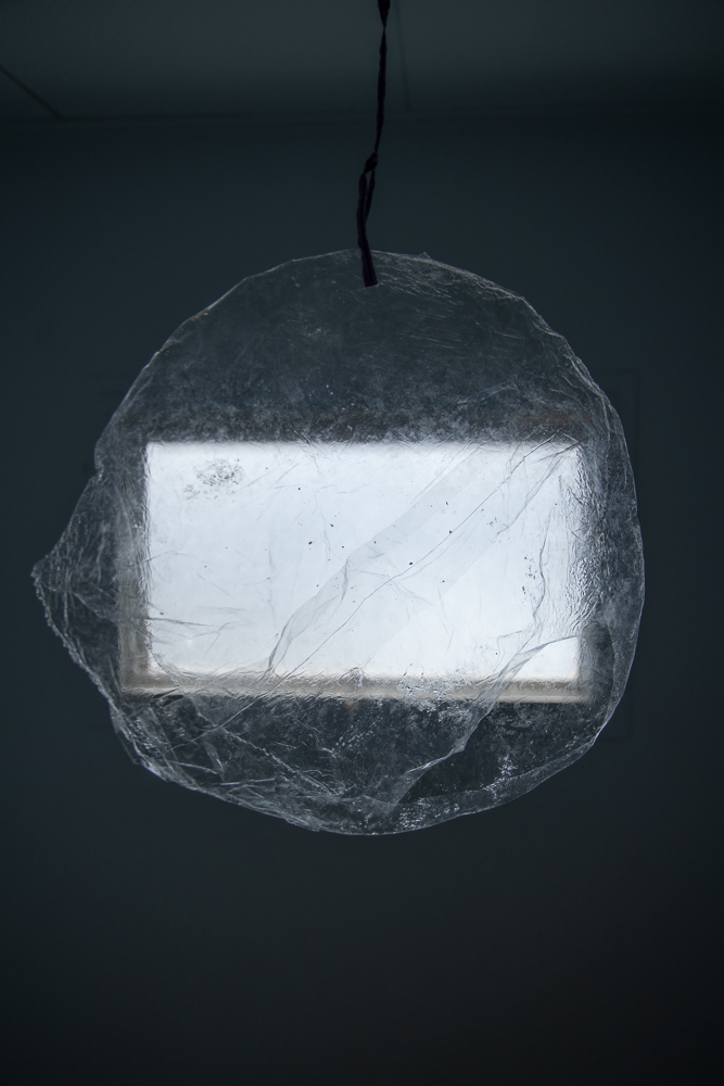 KevinHoth-Cell