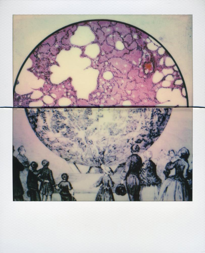 Lisa_McCarty-QuarantineCollage