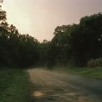 Ingram_Fell this land_01 - Tamrin Ingram