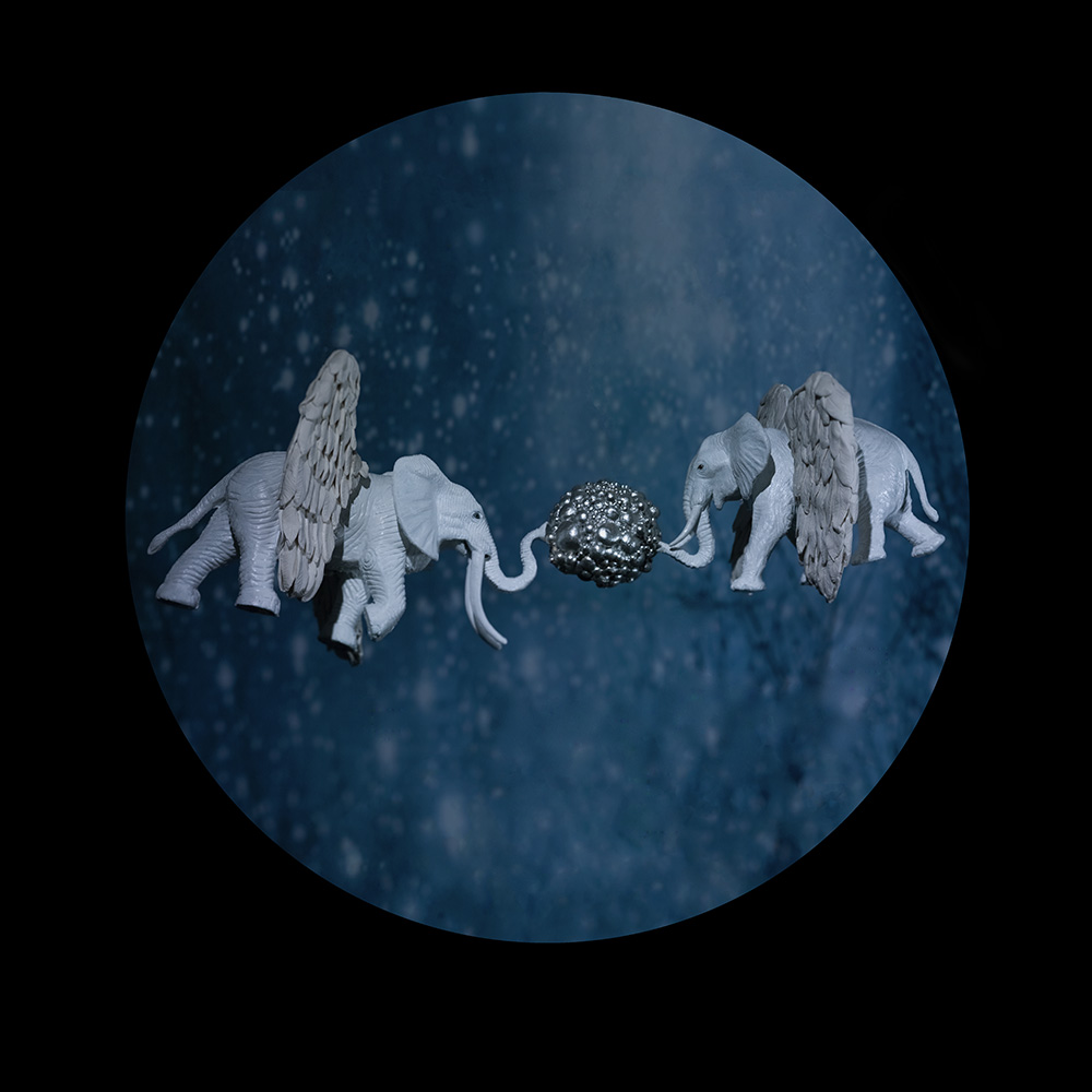 7.elephants and orbs