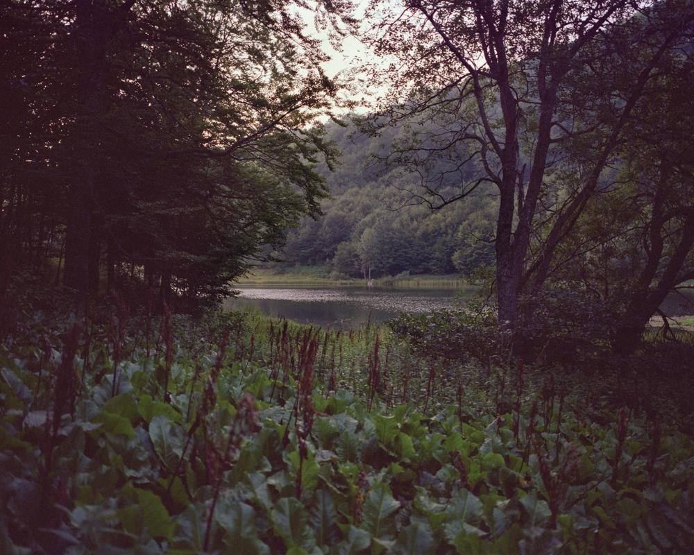 Pond 001