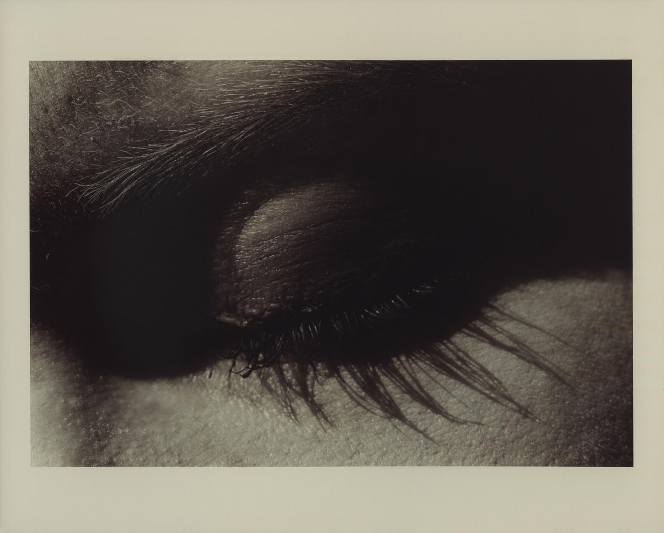 bunny riot's eyelashes 35mm film