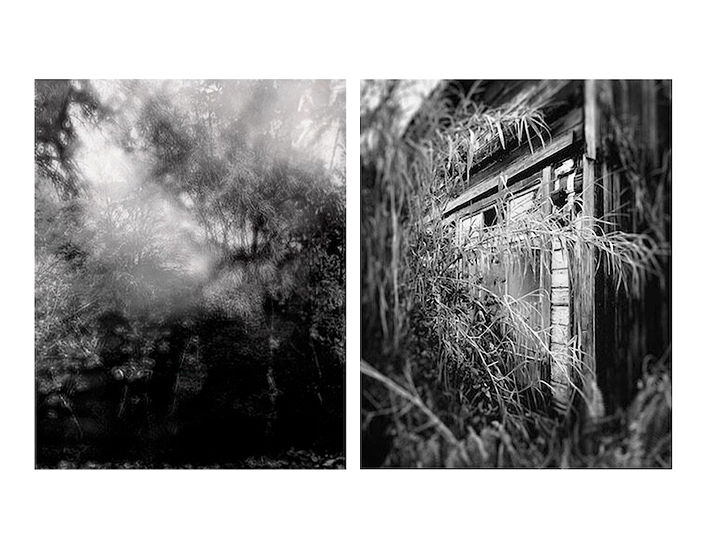 Jeon_Fog_Over_Kolekole_Woodland__Abandoned_House_At_Waipio