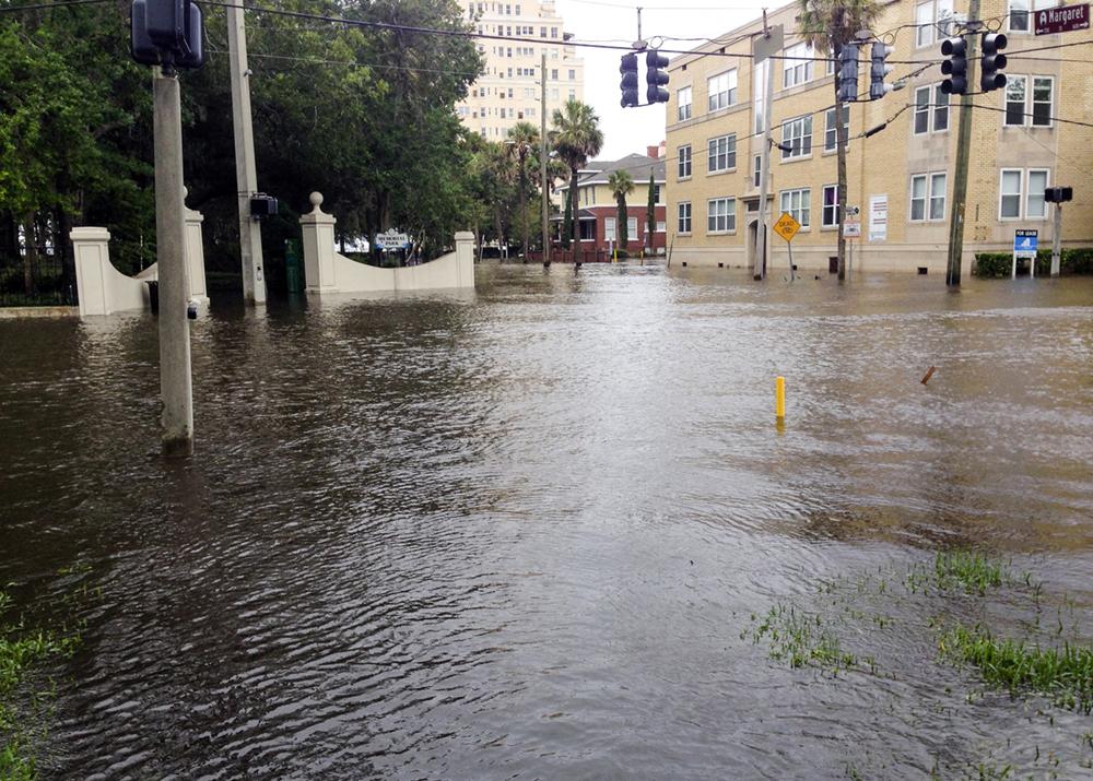 Hurricane Irma_MPariani