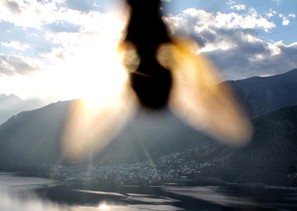 02_Kurt Caviezel, Insect (2)