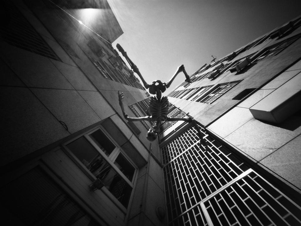 Samoubojiti Kosturko / Suicidal Mr. Bones – eddition for LENSCRATCH