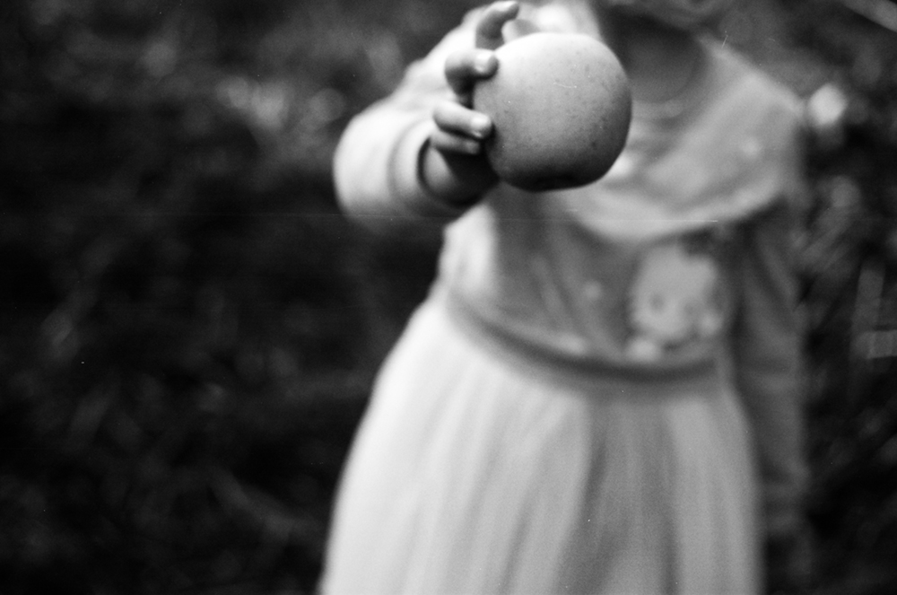 Kathryn Reichert_Fallen Not Far From the Tree